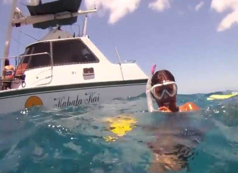 Snorkeling with Turtles Honolulu