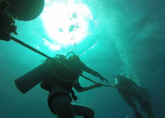 Shipwreck Reef – Certified Divers