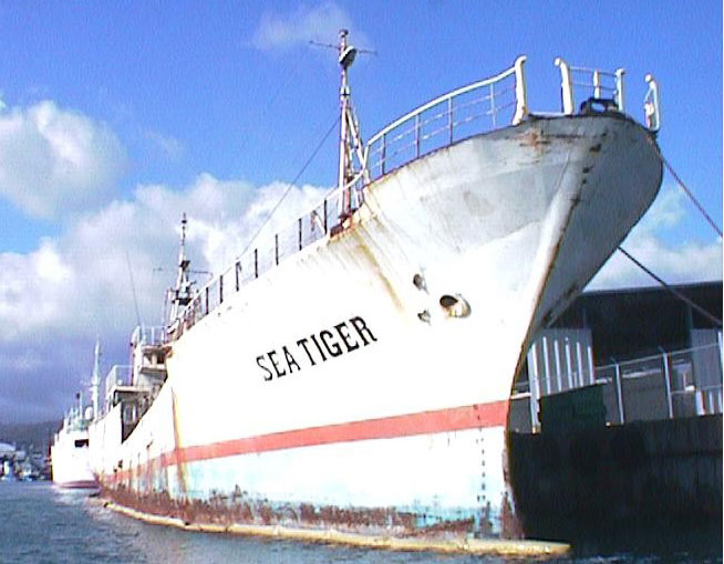 sea tiger shipwreck